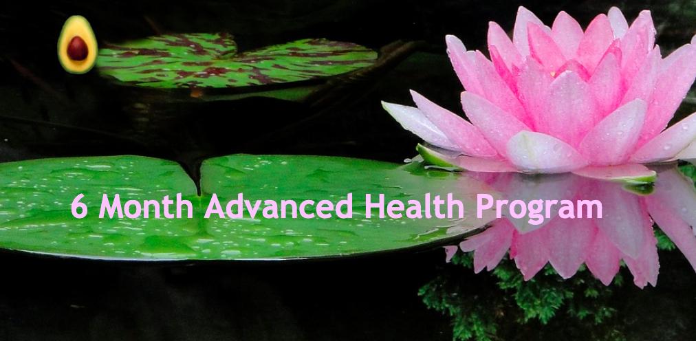 6Month Advanced Health Program